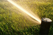 hoa-irrigation-sprinkler.jpg