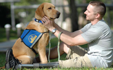 service animal hoa law accomodation attorneys disability.png