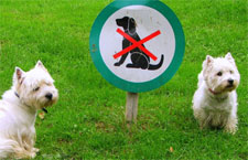 hoa-pet-restriction