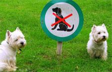 hoa-pet-restriction