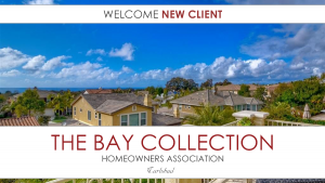Bay-Collection-300x169