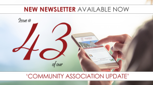 New-Newsletter-Tempalte-300x167